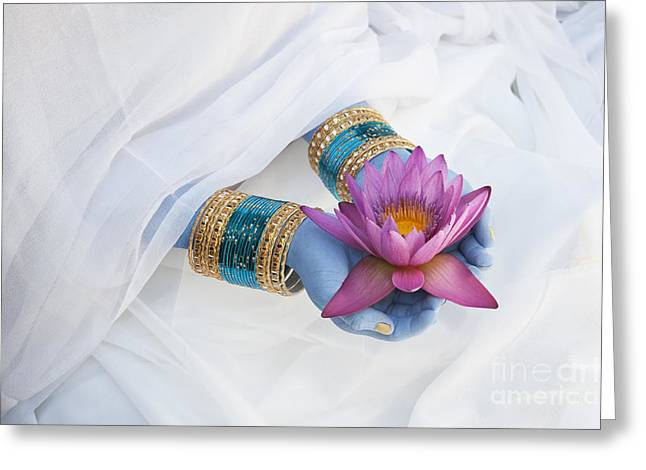 Nymphaea Greeting Cards - Devotion Greeting Card by Tim Gainey