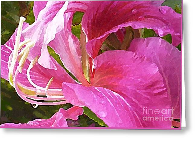 Jim Temple Greeting Cards - Dew Drop Greeting Card by James Temple