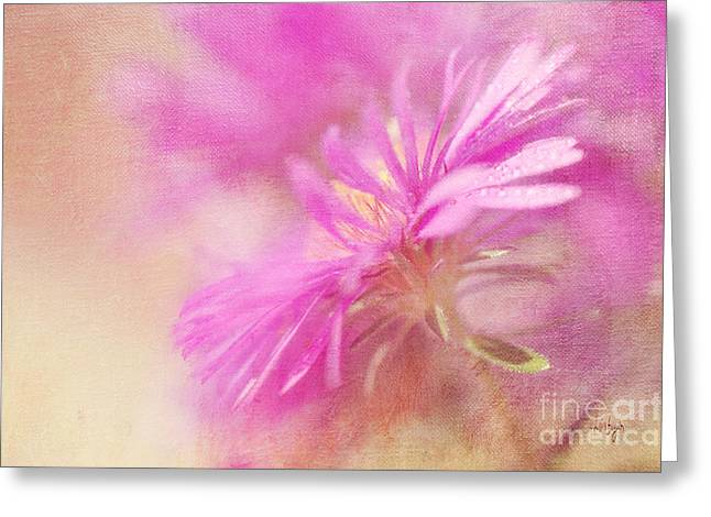 Dew Digital Art Greeting Cards - Dewy Pink Asters Greeting Card by Lois Bryan