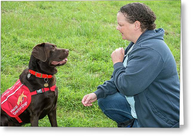 Diabetes Alert Assistance Dog And Owner Greeting Card by Louise Murray