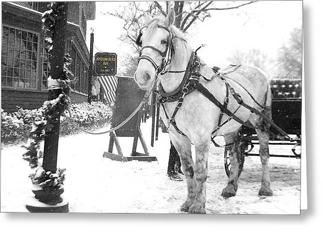 Fingerlakes Greeting Cards - Dickens Horse and Buggy Greeting Card by Michael Carter