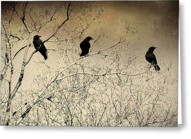 Gothicrow Greeting Cards - Did You See That Greeting Card by Gothicolors Donna Snyder