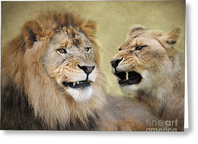 Wildcats Greeting Cards - Difference of Opinion Greeting Card by Jai Johnson