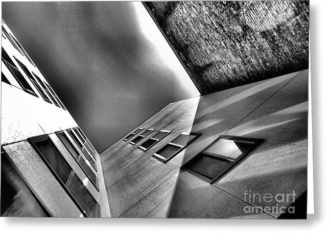 Different Point Of View Greeting Card by Lauren Leigh Hunter Fine Art Photography