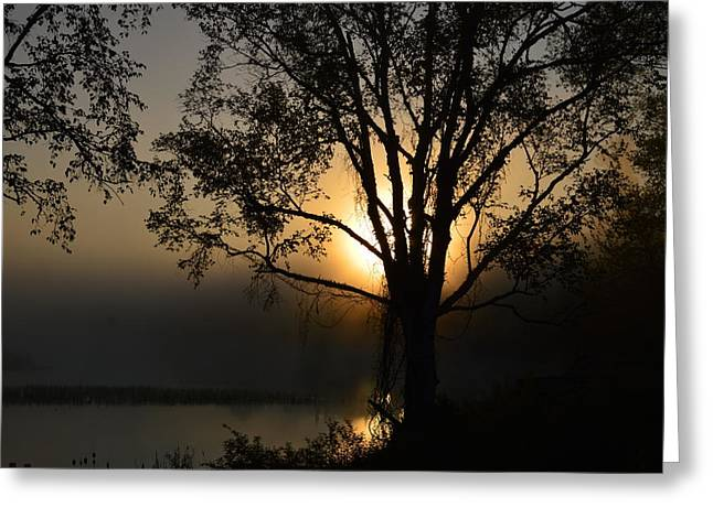 Canoe Greeting Cards - Diffused Glow Greeting Card by Thomas Phillips