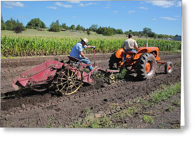 Allis Steam Engine Greeting Cards - Digging Potatoes Greeting Card by Rural America Scenics