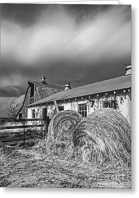 Barn Yard Greeting Cards - DigiScan Bales at the Gate BW Greeting Card by Rick Grisolano Photography LLC