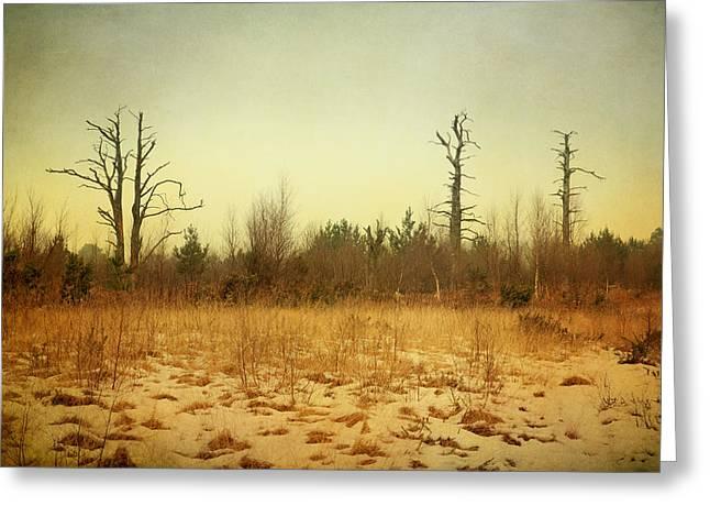 Snow Tree Prints Greeting Cards - Digital Art Trees and Snow Wall Art Greeting Card by Natalie Kinnear