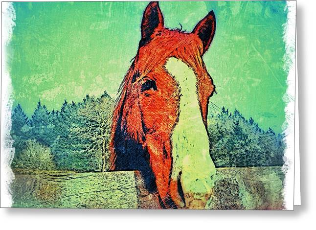 Custom Horse Portrait Greeting Cards - Digital Horse Portrait Greeting Card by Artist BZTAT