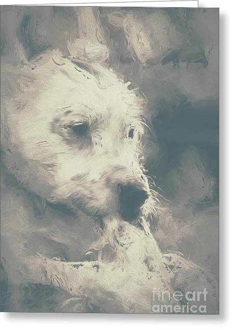 Computer Painted Greeting Cards - Digital oil painting of a cute scruffy dog  Greeting Card by Ryan Jorgensen