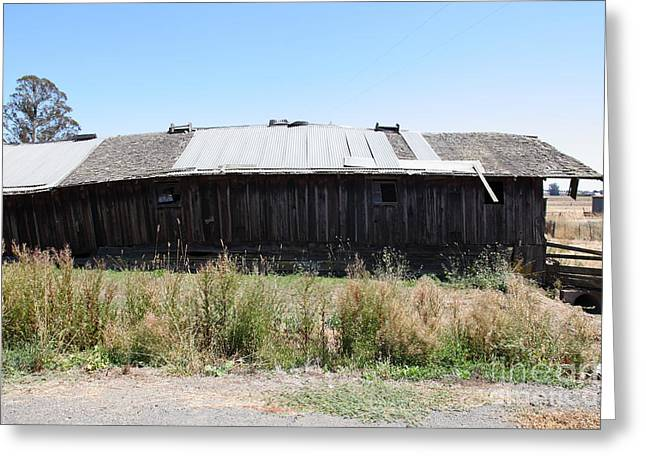 Dilapidated Houses Greeting Cards - Dilapidated Ranch in Petaluma California 5D24411 Greeting Card by Wingsdomain Art and Photography