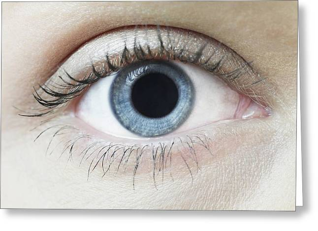 Dilated Pupil Greeting Card by Science Photo Library