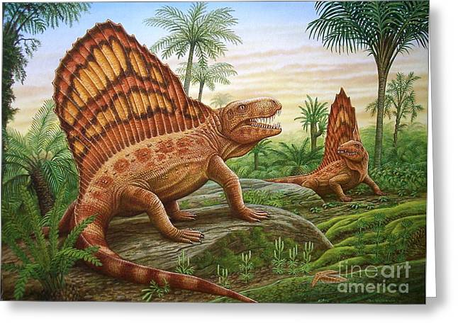 Phil Wilson Greeting Cards - Dimetrodon Greeting Card by Phil Wilson