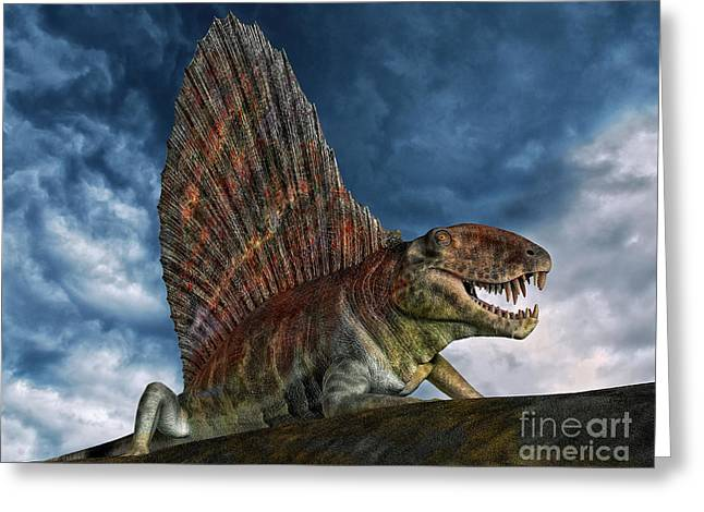 Dimetrodon Was An Extinct Genus Greeting Card by Philip Brownlow