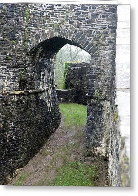 Dinefwr Castle Gate Greeting Card by Paul Cowan