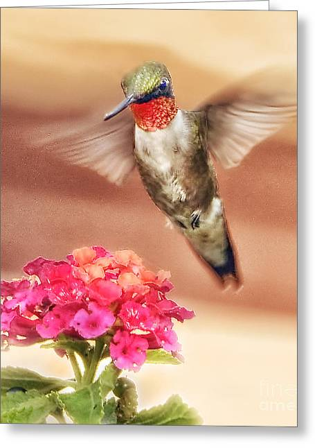 Hovering Greeting Cards - Dinner Time Greeting Card by Arnie Goldstein