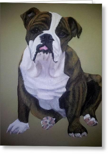 Guard Dog Pastels Greeting Cards - Dino an English Bulldog Greeting Card by Gea Scheltinga