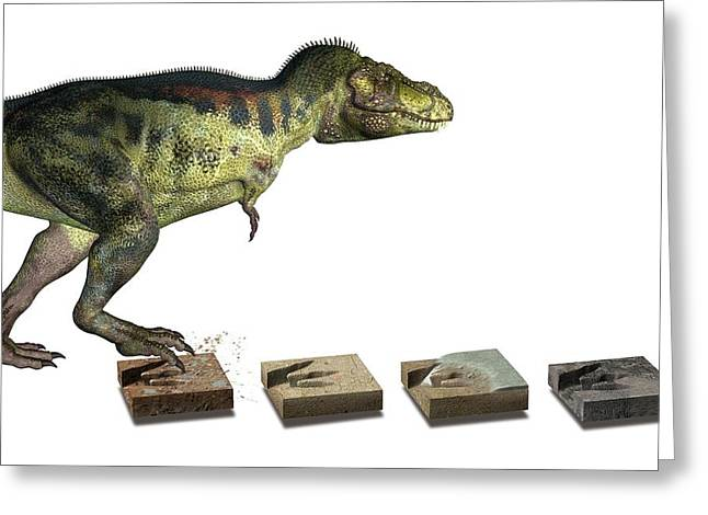 Dinosaur And Fossil Footprints Greeting Card by Claus Lunau