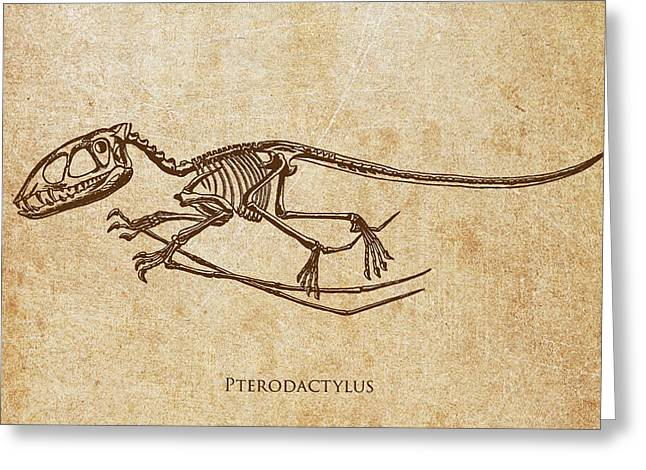 Dino Greeting Cards - Dinosaur Pterodactylus Greeting Card by Aged Pixel