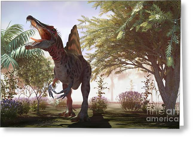 Extinction Greeting Cards - Dinosaur Spinosaurus Greeting Card by Science Picture Co