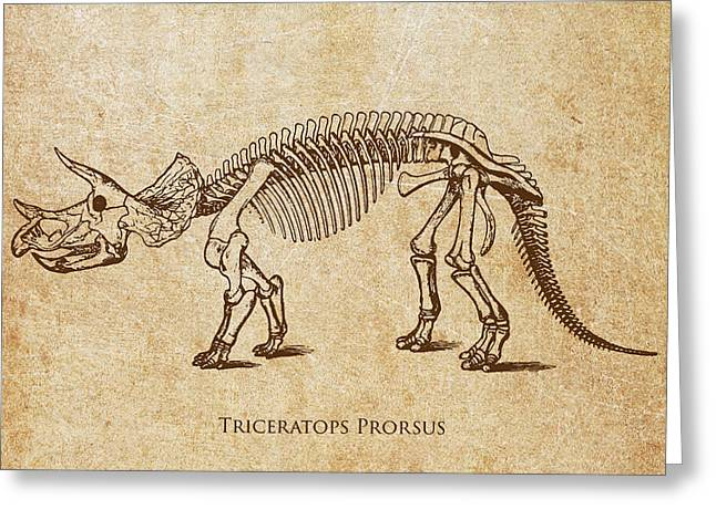 Extinct And Mythical Digital Art Greeting Cards - Dinosaur Triceratops Prorsus Greeting Card by Aged Pixel