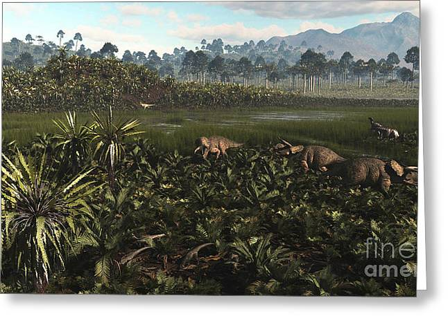 Cyatheales Greeting Cards - Dinosaurs Graze The Lush Delta Lands Greeting Card by Arthur Dorety