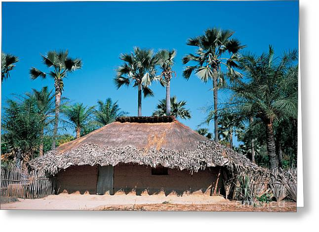 Senegal Greeting Cards - Diolla Hut, Senegal Greeting Card by Adam Sylvester