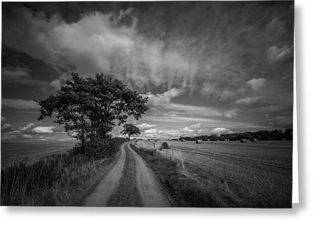 Bales Photographs Greeting Cards - Dirt path Greeting Card by Chris Fletcher