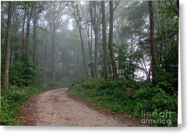 Dirt Path in Forest Woods with Mist Greeting Card by Olivier Le Queinec