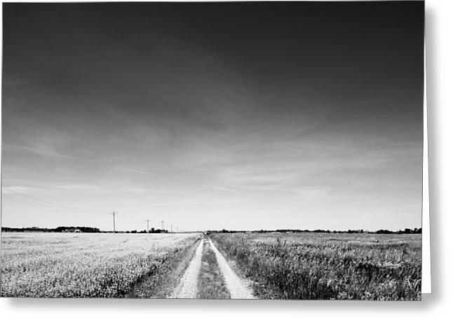Erickson Greeting Cards - dirt road across prairie landscape BW Greeting Card by Donald  Erickson