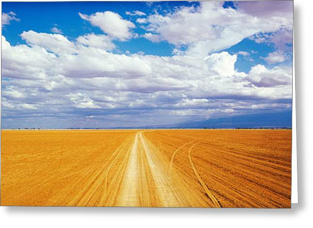 Convergence Greeting Cards - Dirt Road Amboseli Kenya Greeting Card by Panoramic Images