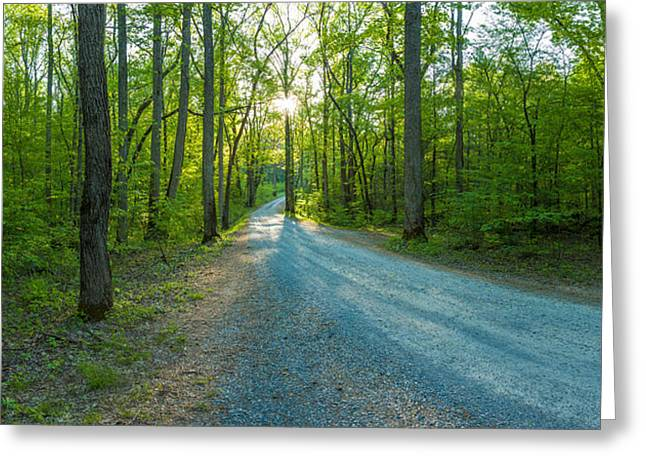 Smoky Greeting Cards - Dirt Road Passing Through A Forest Greeting Card by Panoramic Images
