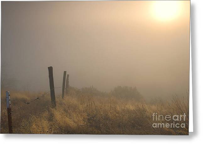 Barbed Wire Fences Greeting Cards - Disapearing Greeting Card by Mike  Dawson