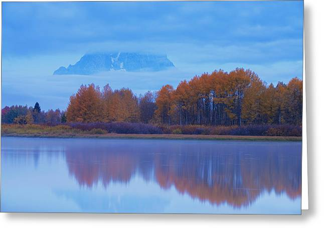 Moran Greeting Cards - Disappearing Act Greeting Card by Joseph Rossbach
