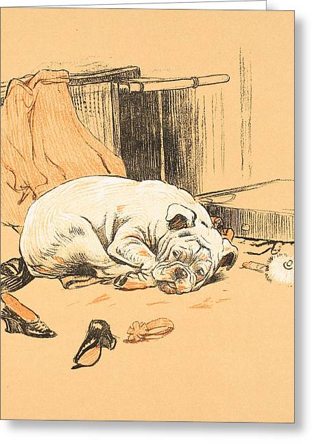 Bulldog Prints Greeting Cards - Disappointment at not finding the Chocolates Greeting Card by Cecil Charles Windsor Aldin
