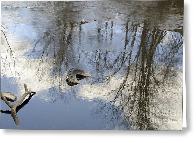 Reflections Of Sky In Water Greeting Cards - Discord Greeting Card by Luke Moore