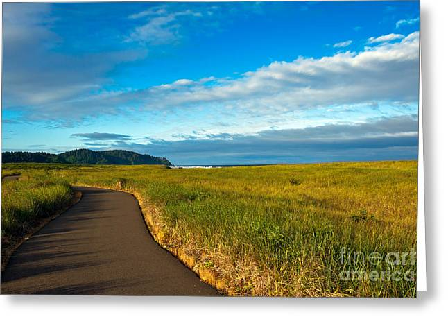 Seacape Greeting Cards - Discovery Trail Greeting Card by Robert Bales