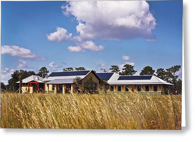 Disney Wilderness Preserve Greeting Card by Rich Franco