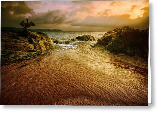 Storm Prints Greeting Cards - Display at Leas Foot Greeting Card by Mark Leader