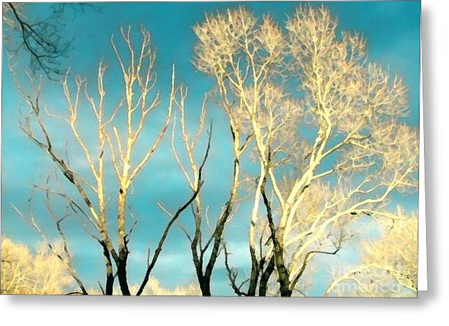 Ledge Greeting Cards - Display Greeting Card by Cristophers Dream Artistry