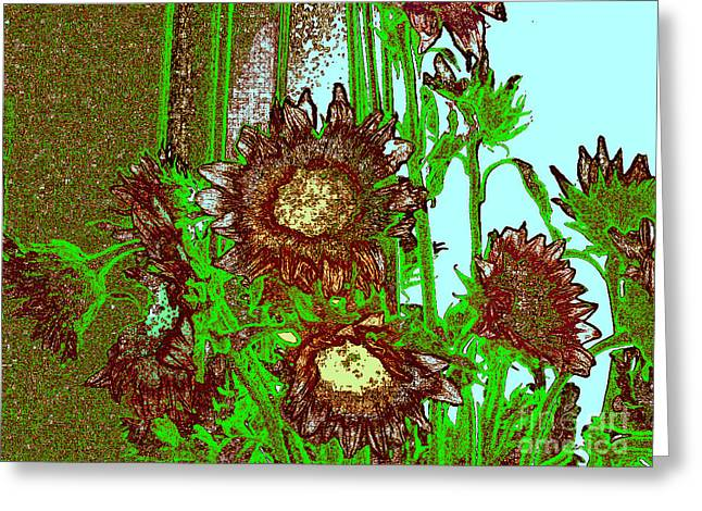 Manipulative Greeting Cards - Display of Sunflowers Greeting Card by Merton Allen
