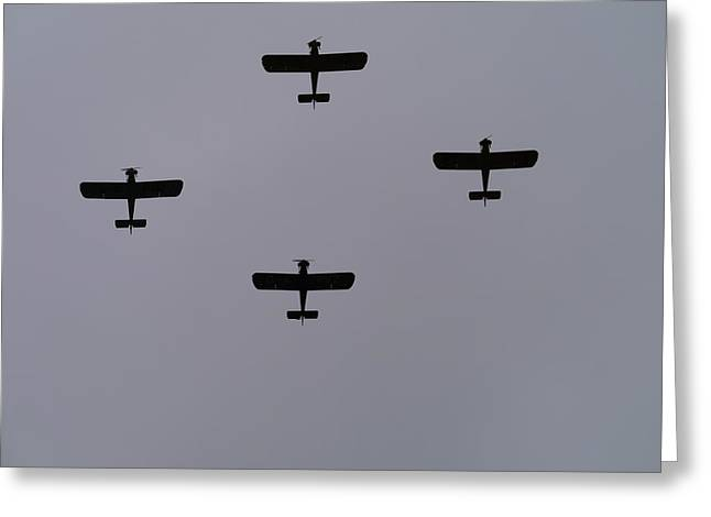 Airoplane Greeting Cards - Display team Greeting Card by Sharon Bennett
