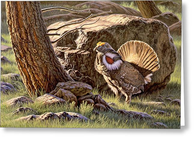 Wildlife Greeting Cards - Displaying--Blue Grouse Greeting Card by Paul Krapf