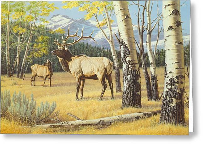 Yellowstone Greeting Cards - Distant Bugle Greeting Card by Paul Krapf