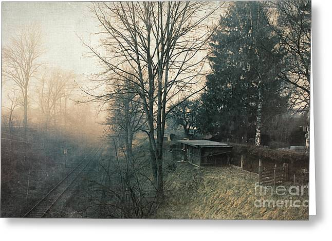 Winter Photos Greeting Cards - Distant Light Greeting Card by Jutta Maria Pusl