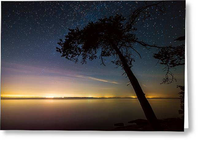 Twinkle Greeting Cards - Distant Lights Greeting Card by James Wheeler