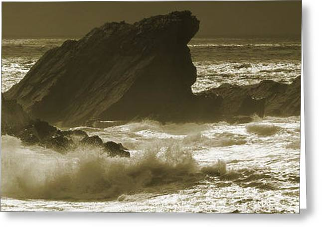 Ocean Panorama Greeting Cards - Distant Sails Greeting Card by Edmund Nagele