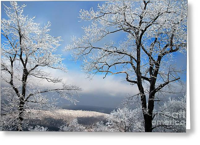 White Snow On Trees Greeting Cards - Distant Storms Greeting Card by Lois Bryan