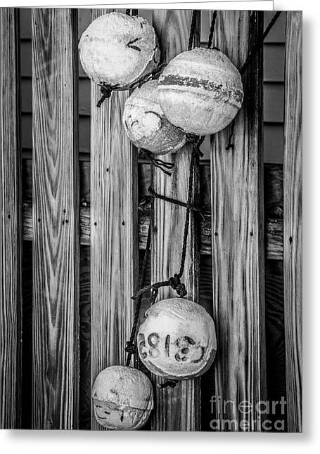 Old West Photography.america Photography Greeting Cards - Distressed Buoys on Fencing Key West - Black and White Greeting Card by Ian Monk