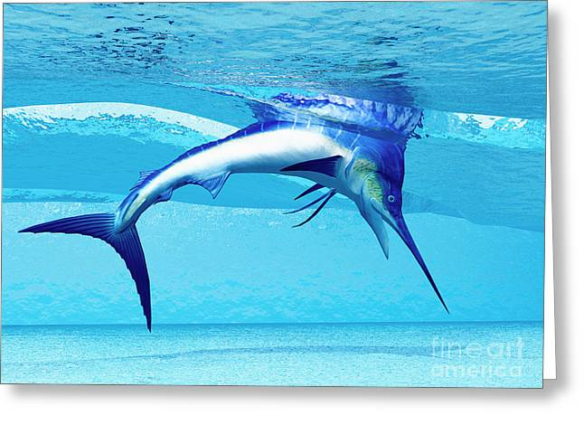 Swordfish Greeting Cards - Dive Greeting Card by Corey Ford